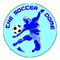 Service logo for The Soccer Dome, Wirral Walking Football